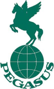 CAV Reiterreisen Pegasus Logo