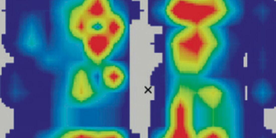 CAV Sattelbäume Testbild Leonhard