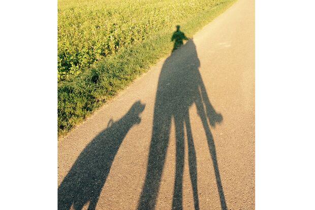 CAV Schattenfoto Leserfotos Christiane Wehnert