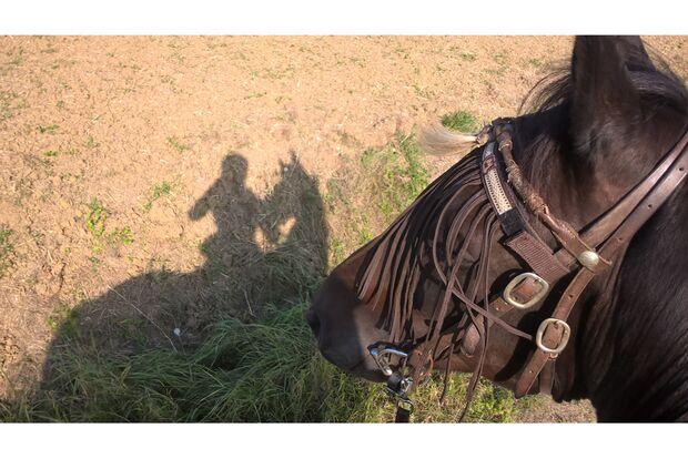CAV Schattenfoto Melanie Gast