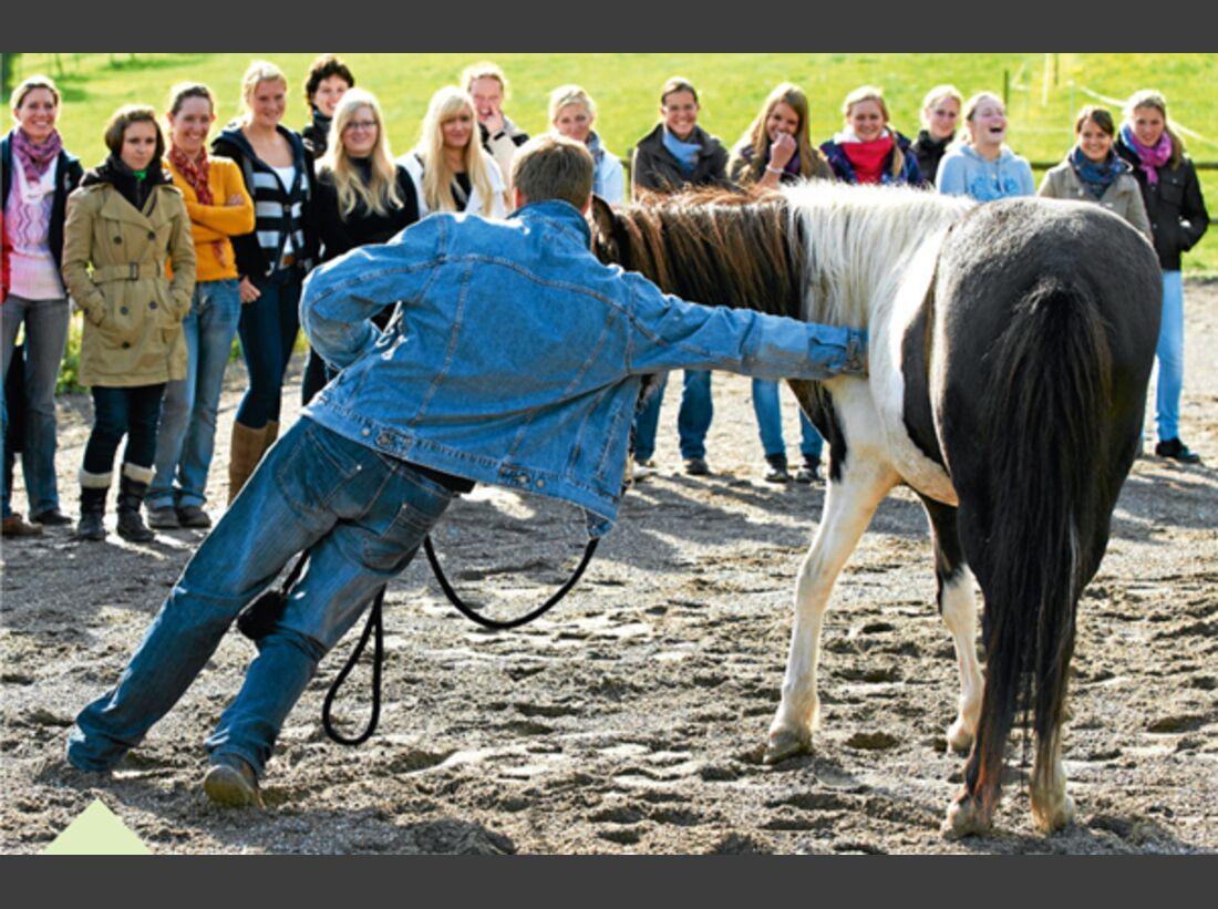 CAV Stimmung Horsemanship Florian Oberparleiter 6