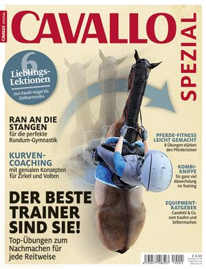 CAV Titel Cover 4a 2019 Sonderheft Training