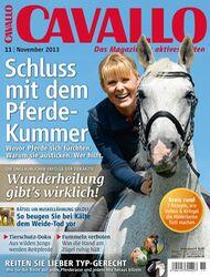 CAV Titel November 2013