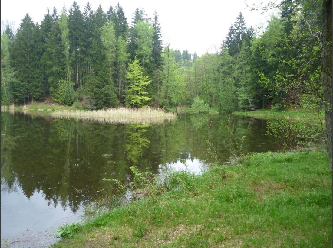 CAV Wanderritt_Oesterreich_Ostsee_03 (jpg)