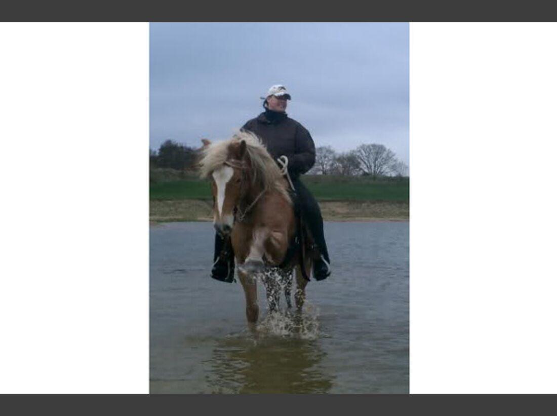 CAV Wasser Pferde baden - Melanie Wrede