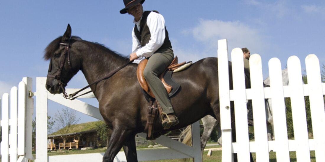 CAV Working Equitation