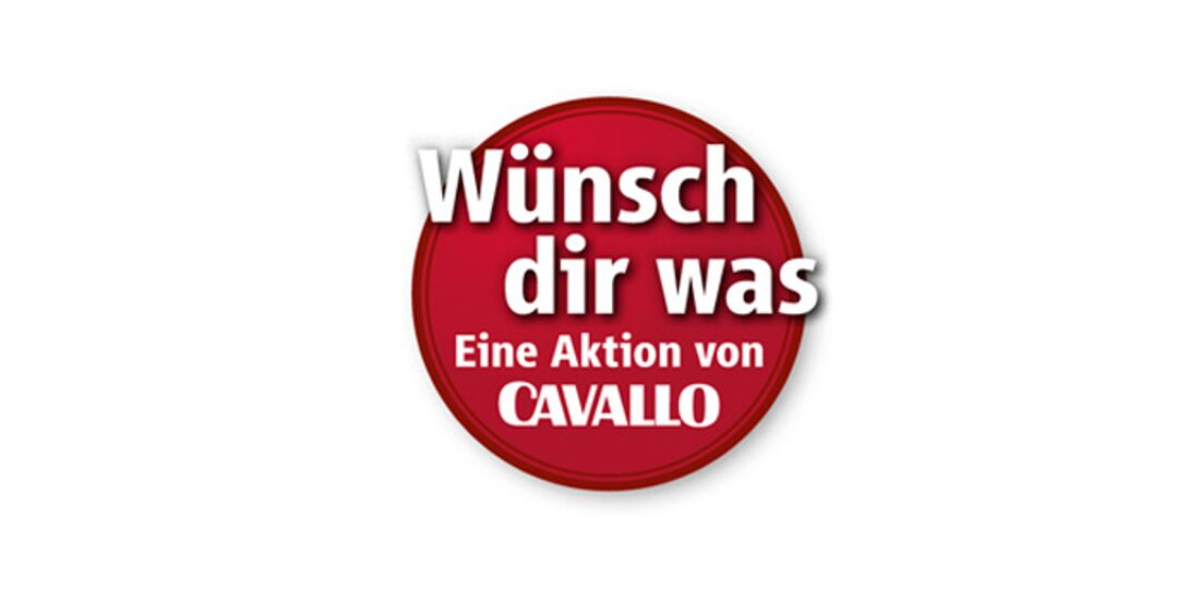 CAV Wünsch Dir was Profi-Coaching Coach Logo