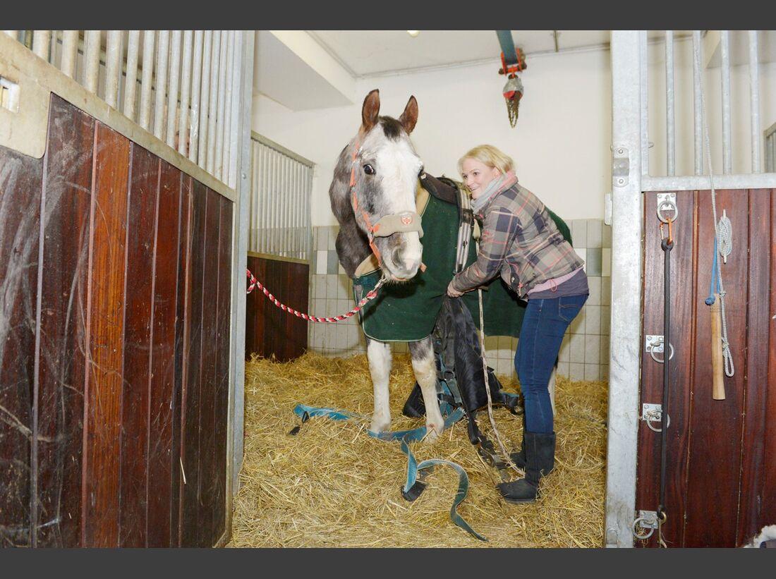 CAV Yvonne Gutsche Amour Tierschutz