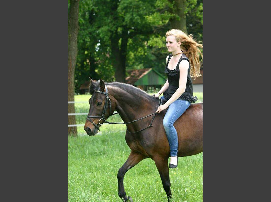 CAV-gebisslos-reiten-Anna-Roediger