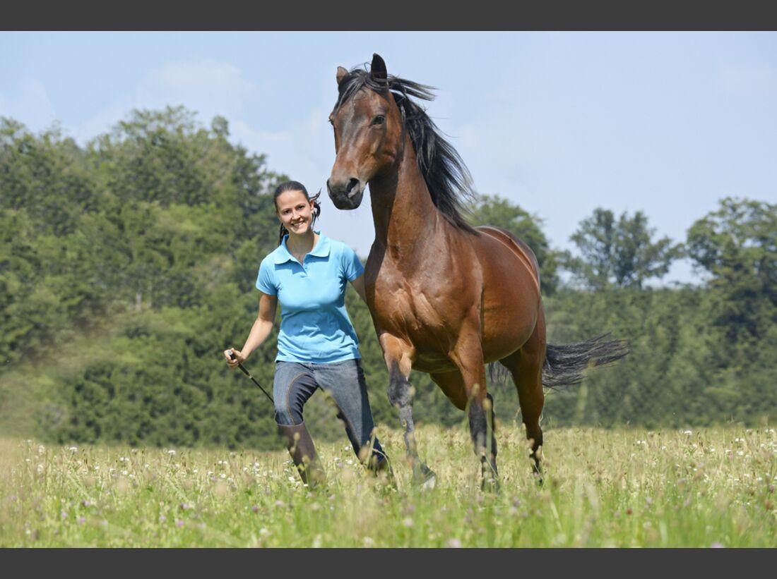 cav-pferde-fotografieren-2-lir2751 (jpg)