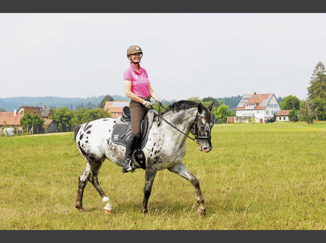cav-pferde-fotografieren-2-nicht-stehen-lir0489 (jpg)
